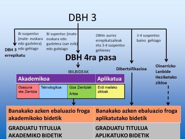 DBH 4ko aukerak